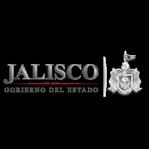 cliente_jalisco_tycgis