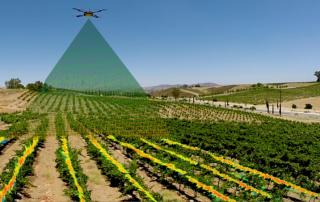 teledetecccion-con-drones-aplicado-a-la-agricultura