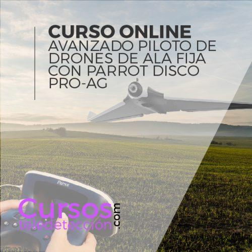 Curso Online piloto de alafina con parro disco pro ag
