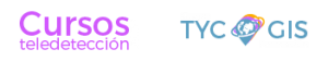 TYC GIS logo footer