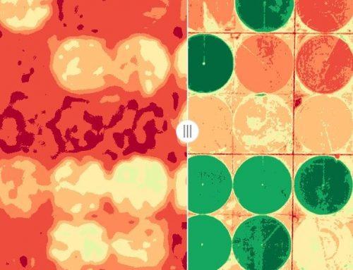 Análisis de cultivos mediante detección de cambio